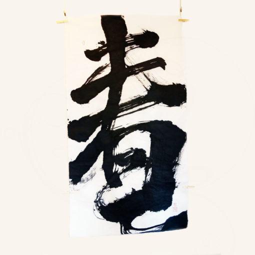 calligraphie-chinoise-printemps-ching-yuan