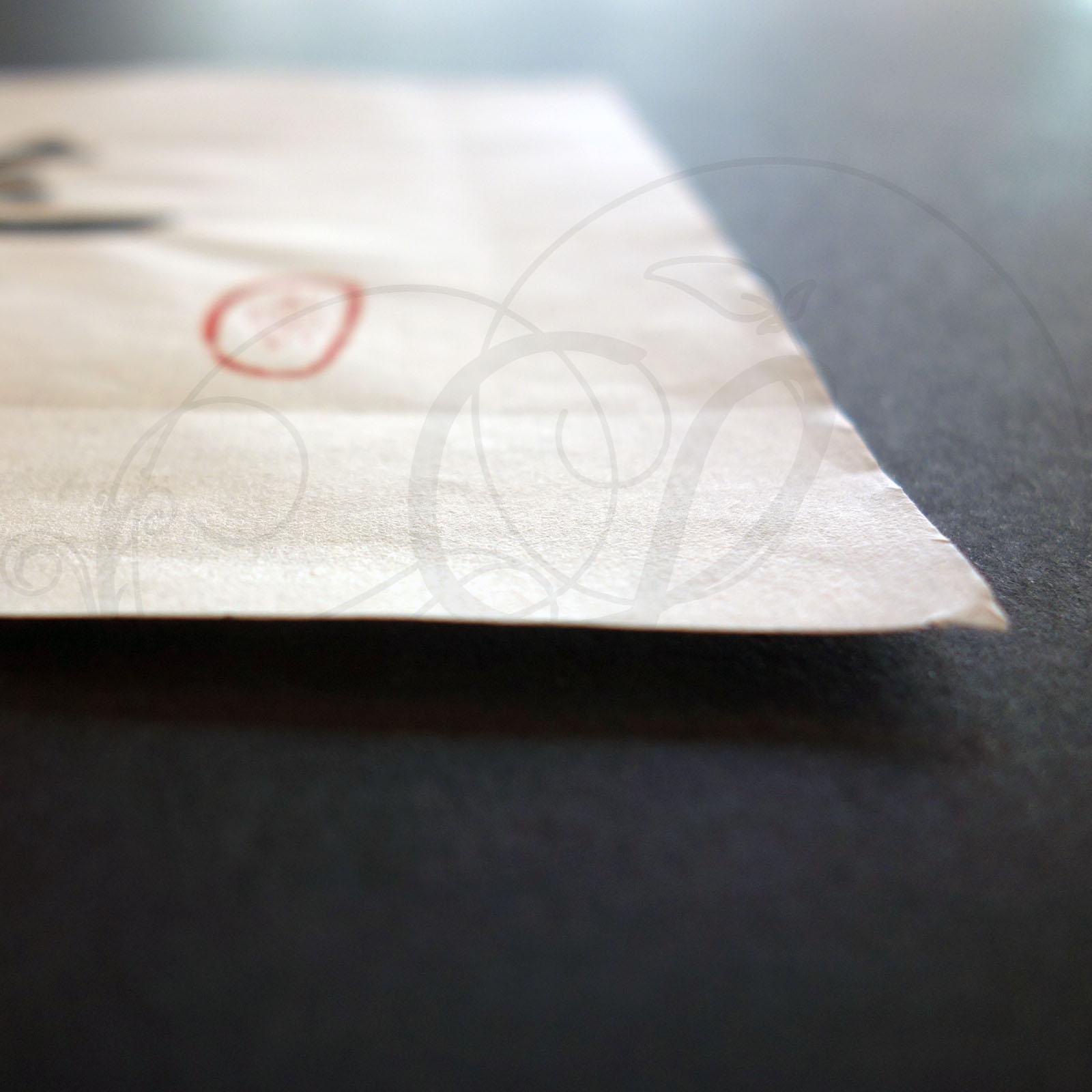3-calligraphie-chinoise-zodiaque-chevre-lishu-03