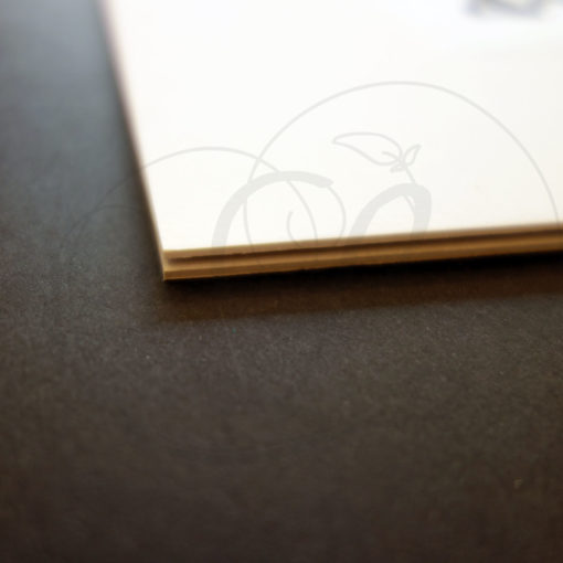 8-calligraphie-chinoise-zodiaque-cochon-xinshu-04