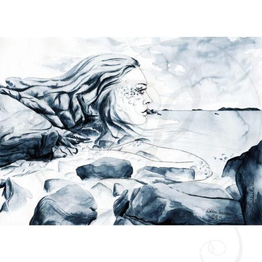 dessins-lucidaelle-cotes-bretonnes-02