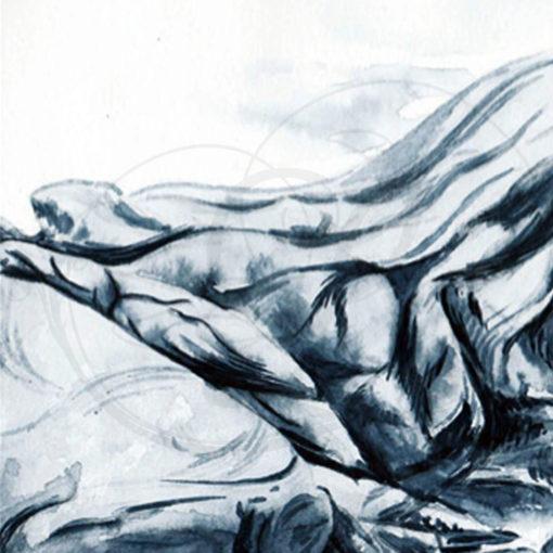 dessins-lucidaelle-cotes-bretonnes-05