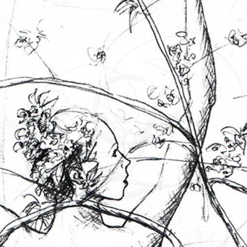 dessins-lucidaelle-flaraison-du-cerisier-03
