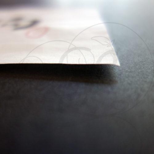 3-calligraphie-chinoise-zodiaque-chien-lishu-03