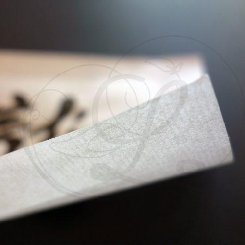 3-calligraphie-chinoise-zodiaque-dragon-xinshu-03