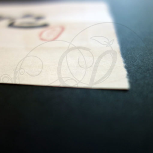 3-calligraphie-chinoise-zodiaque-serpent-lishu-03