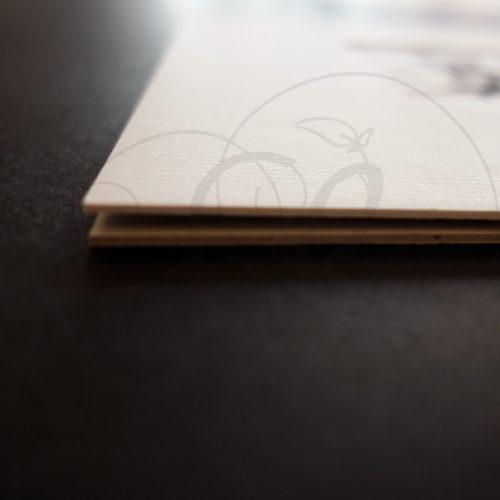 8-calligraphie-chinoise-zodiaque-coq-lishu-04