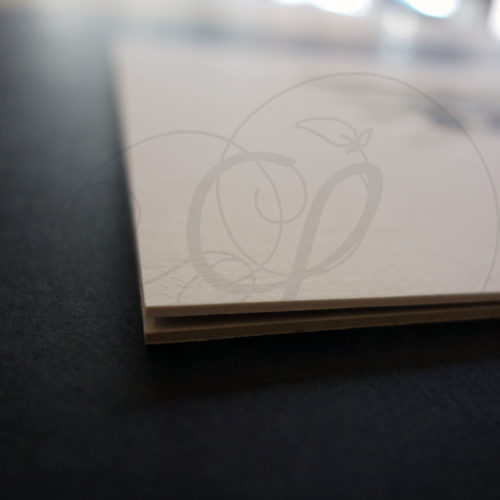 8-calligraphie-chinoise-zodiaque-tigre-lishu-04