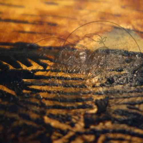 kadeg-gravure-117-06