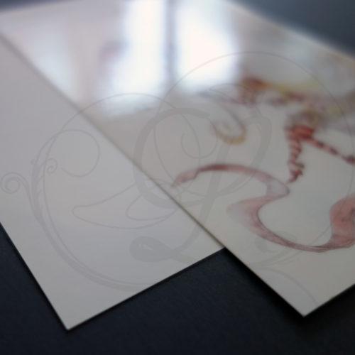 lawrence-rasson-carte-postale-alice-wonderland-04