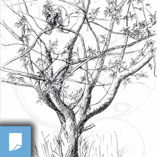 poster-lucidaelle-fée-cerisier-arbre-legendart
