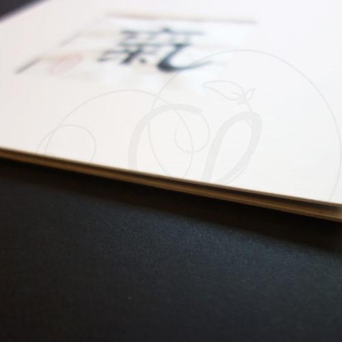 calligraphie-chinoise-vertus-li-shu-chi-03