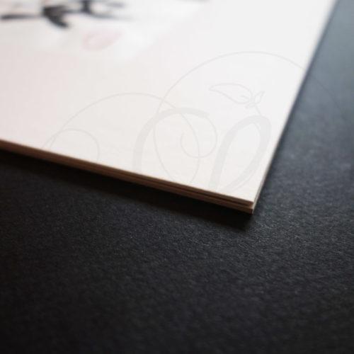 calligraphie-chinoise-vertus-li-shu-paix-03
